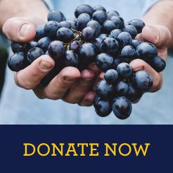 NMB-donatead