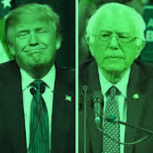 How to be more green on Earth Day than Donald, Ted, Hillary, or Bernie